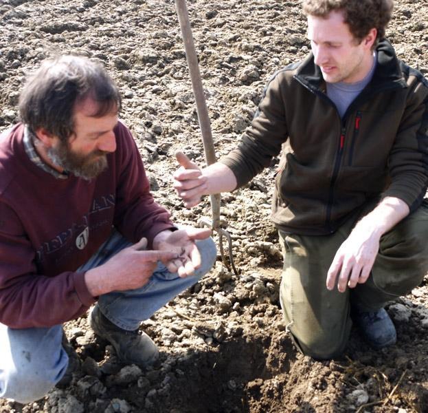 Forschung Bodenbeschaffenheit